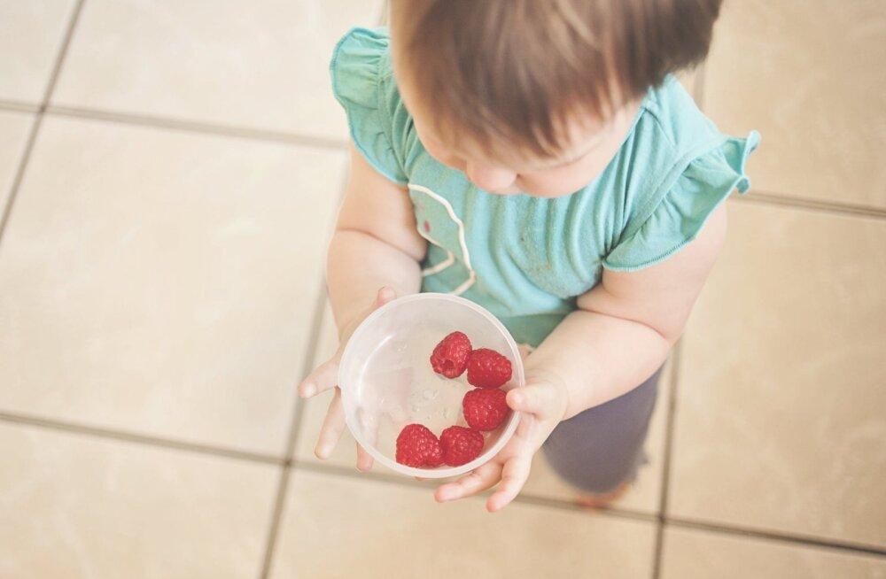 Miks võiks kodus lapsele pakkuda toitu, mida koolis-lasteaias saab harva