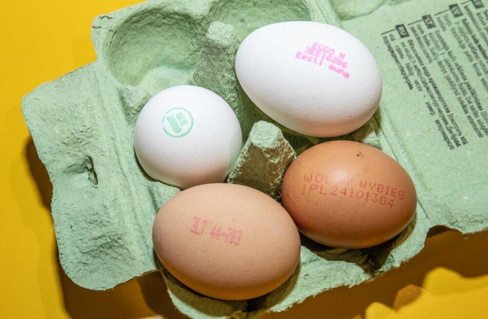 Hind otsustab. Tarbija eelistab puurikanade mune
