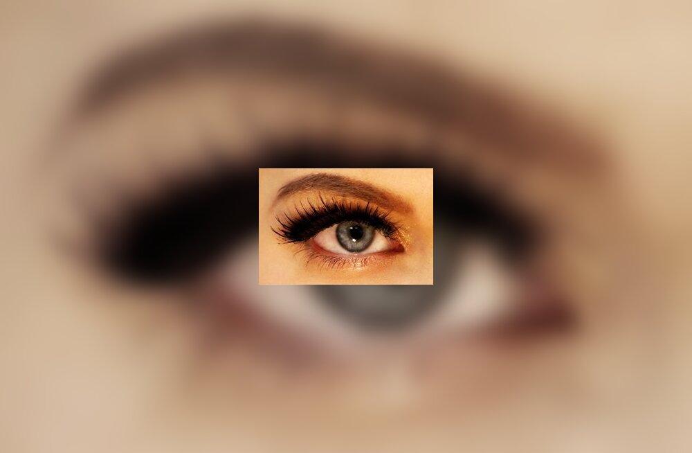 dbeb971a0a9 Miks tekib kuiva silma sündroom ja mis see on? - Eesti Naine