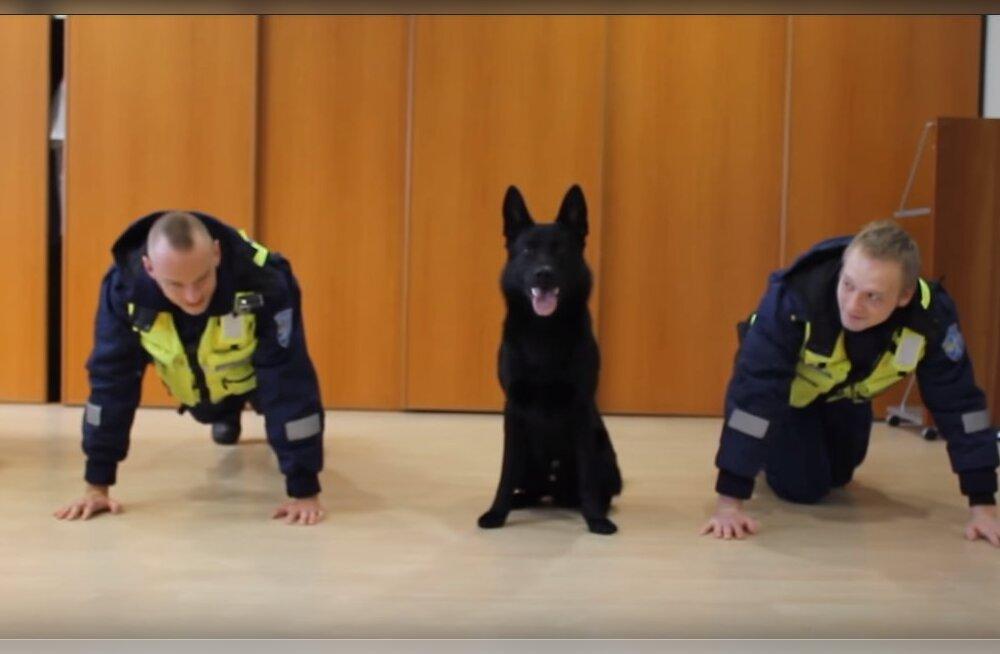 Armas VIDEO | Vaata, kuidas Eesti politseinikud koos käte- ja käpakõverdusi teevad