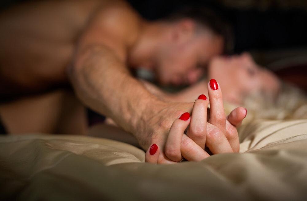 Soovid magamistoas eksperimenteerida ja kogeda eriti kuuma seksi? On üks tähemärk, kes on sellele soovile vägagi avatud