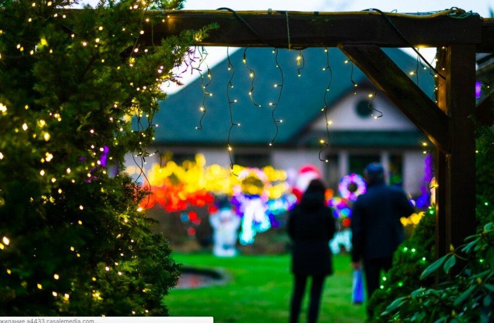 ФОТО. 30 тысяч лампочек и Гринч — знаменитый дом в Латвии вновь украшен в честь праздников