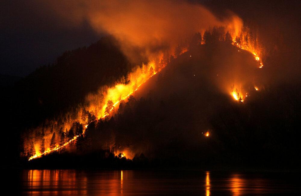 Lihtsalt vaata seda Siberi tulepõrgut. Ja mõtle.