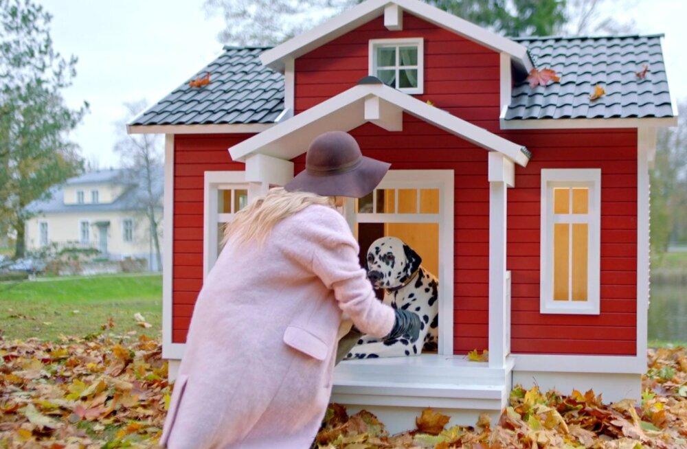 VIDEO: Vaata, milline näeb välja eestlaste leiutatud nutikas koeravilla