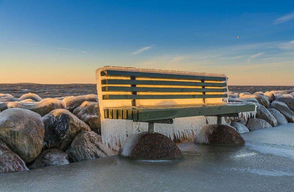 KAUNIS FOTO | Rohuküla sadama pink muutus jääpurikaks
