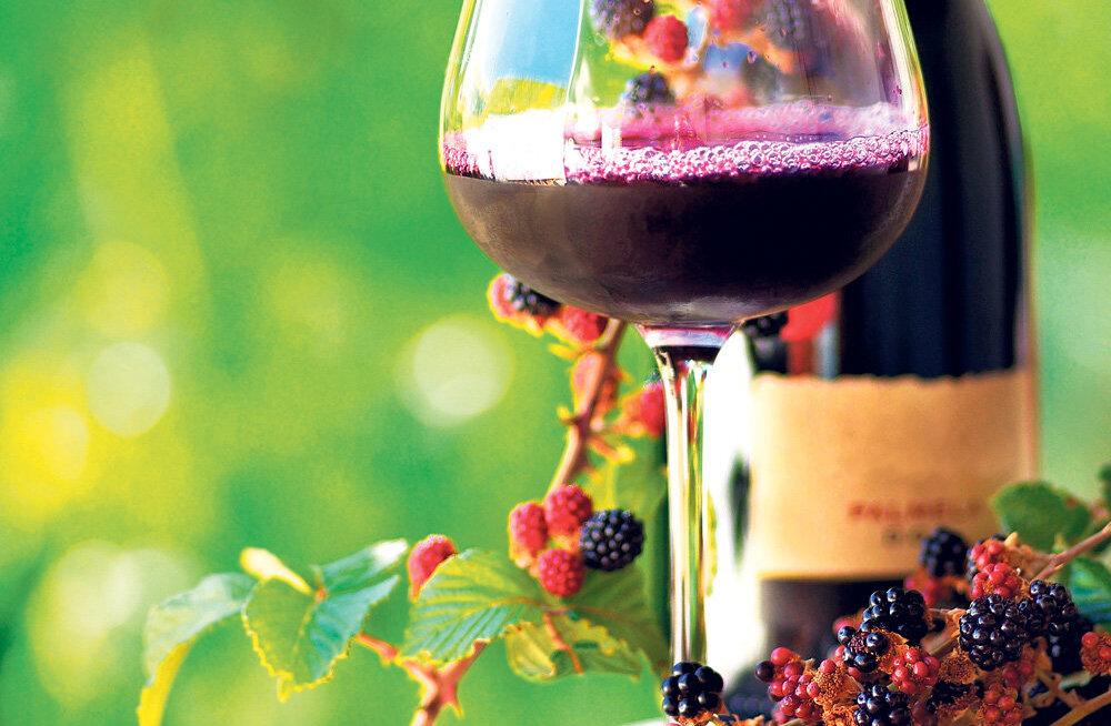 Algab koduveinikonkursi veinide kogumine