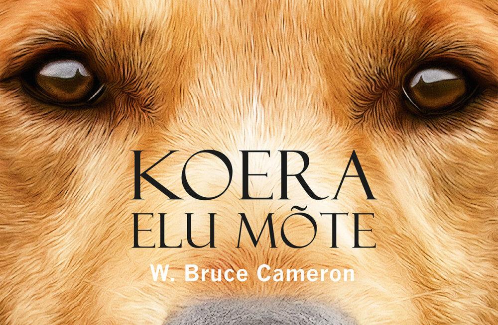 """LOE KATKENDIT kogupereraamatust """"Koera elu mõte"""", mille ekraniseering linastub veebruari lõpus"""