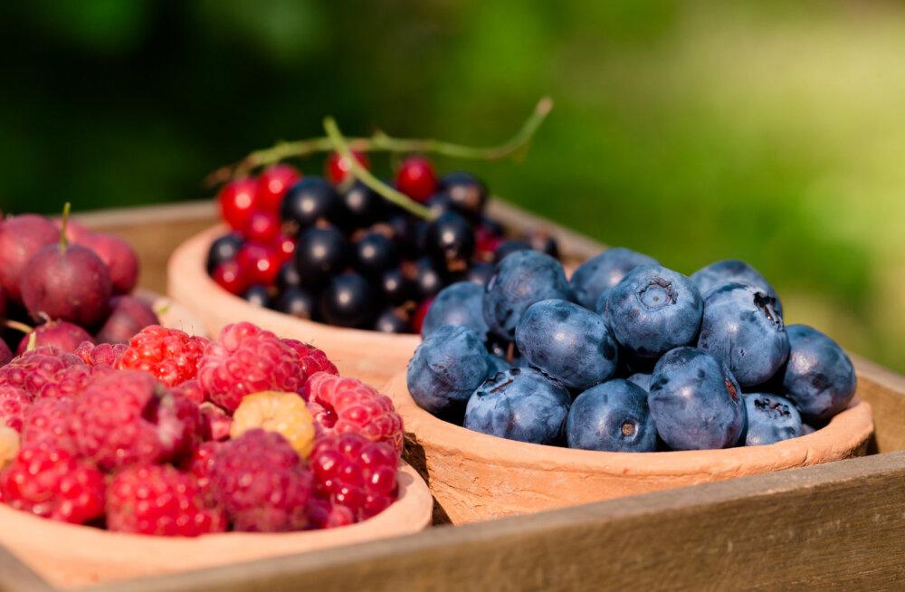 Mari Metsallik soovitab: just need toidud on naise tervisele eriti kasulikud