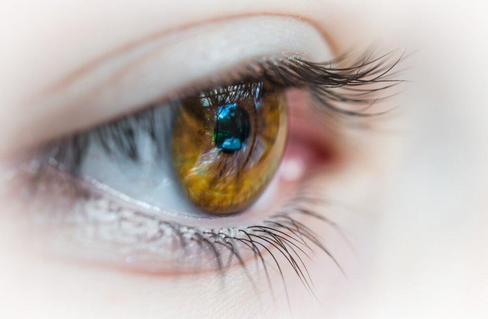 9ffdca0451a Millal tuleb läätsed prillide vastu vahetada ja mis juhtub, kui jätta  läätsed liiga kauaks silma