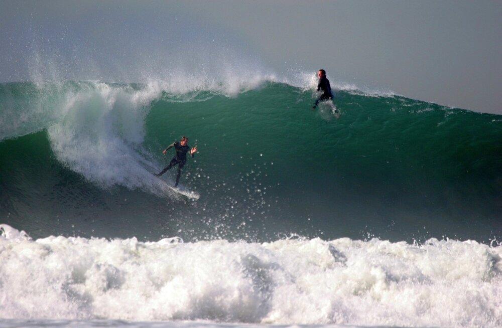 VIDEO: Tahiti surfar elas üle tohutu hiigellaine