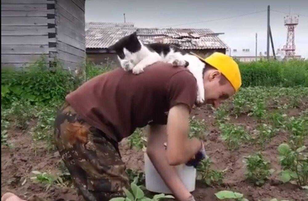 VIDEO | Tabav stiilinäide: head und ei saa segada ükski kohustus