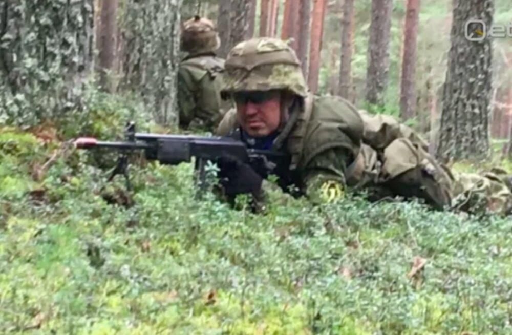 Taavi Rõivas veetis oma mesinädalad sõdurina metsas kaevikuid kaevates ja kätekõverdusi tehes