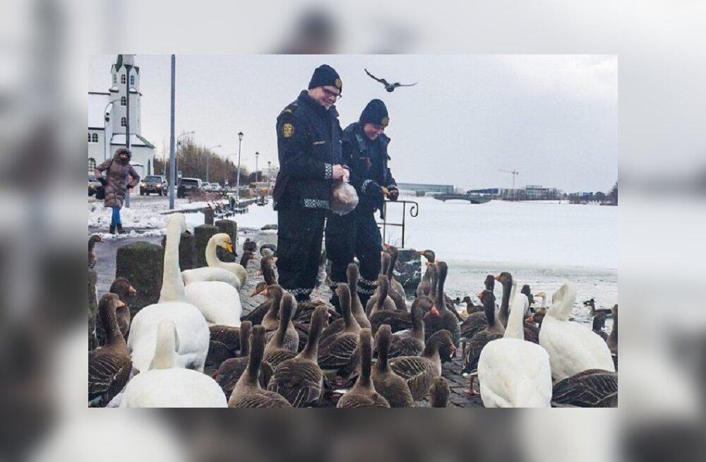 В какой стране живут самые дружелюбные полицейские?