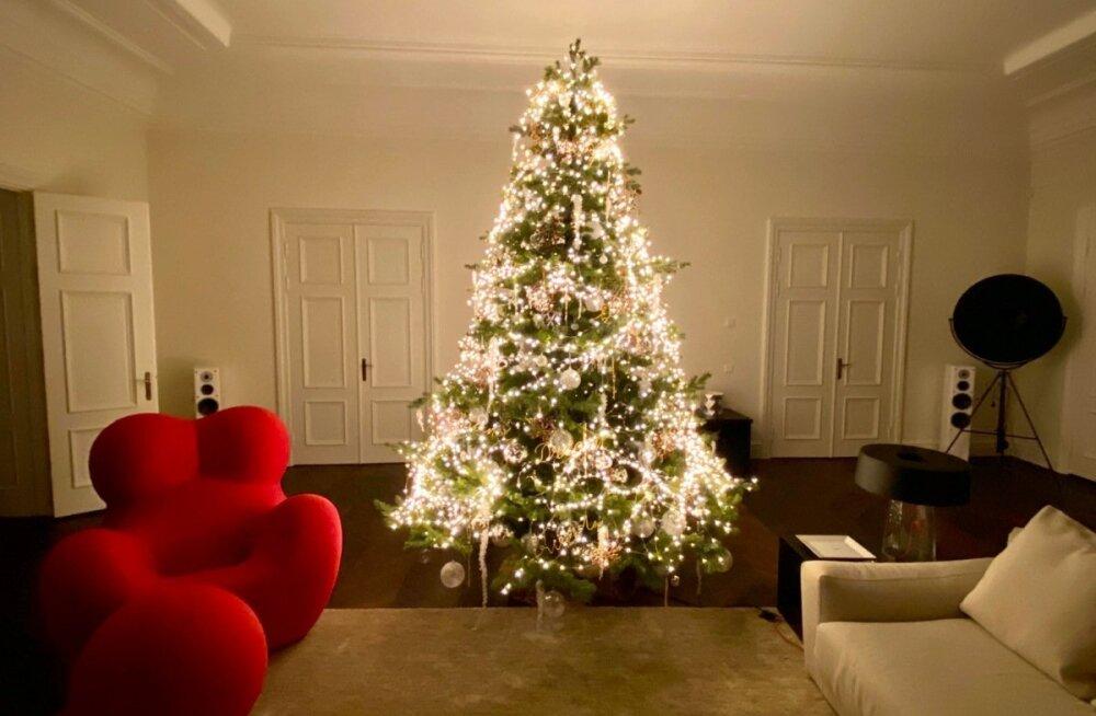 SUUR ÜLEVAADE | Eesti staaride luksuslikud jõulupuud: kes on nõus maksma kauni kuuse eest hiigelsummat?