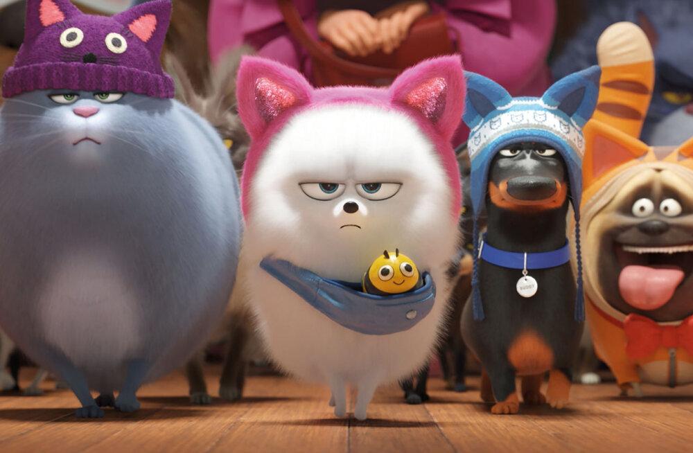 Lemmikloomade salajane elu ärkab ellu Pere ja Kodu filmihommikul!