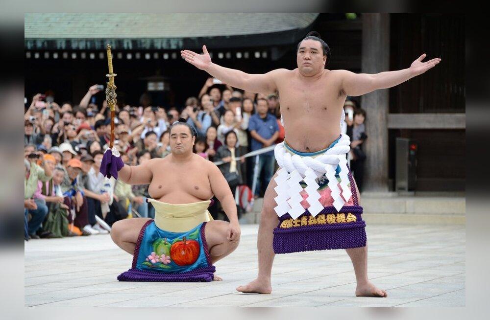 Harumafuji Tokyos yokozuna ringi astumise tseremoonial, sumo