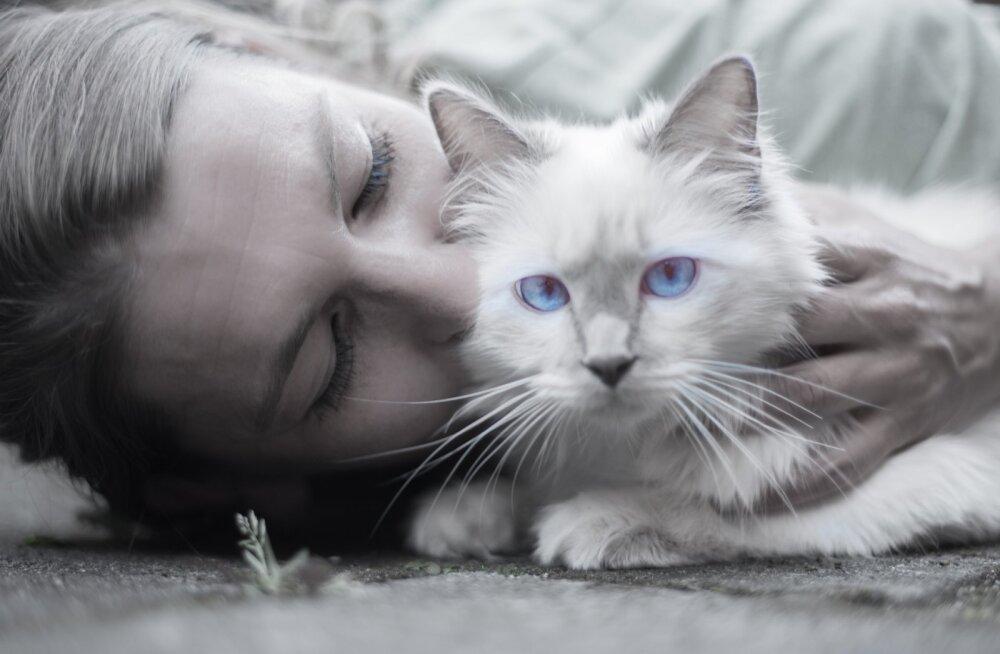Spetsialist annab üllatava selgituse: mida kass sinust tegelikult arvab?