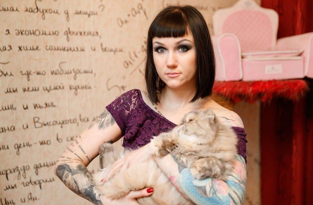 Nõid Alisa kassidega