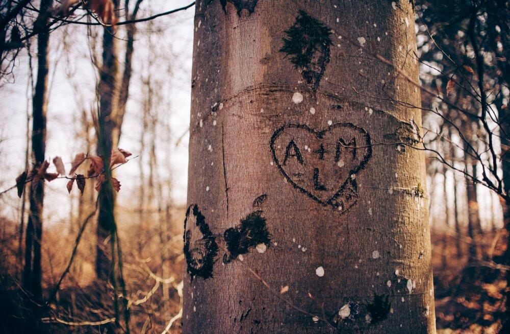 Seda peavad kõik lapsevanemad teadma: kuidas aidata oma murtud südamega teismelisel eluga edasi liikuda