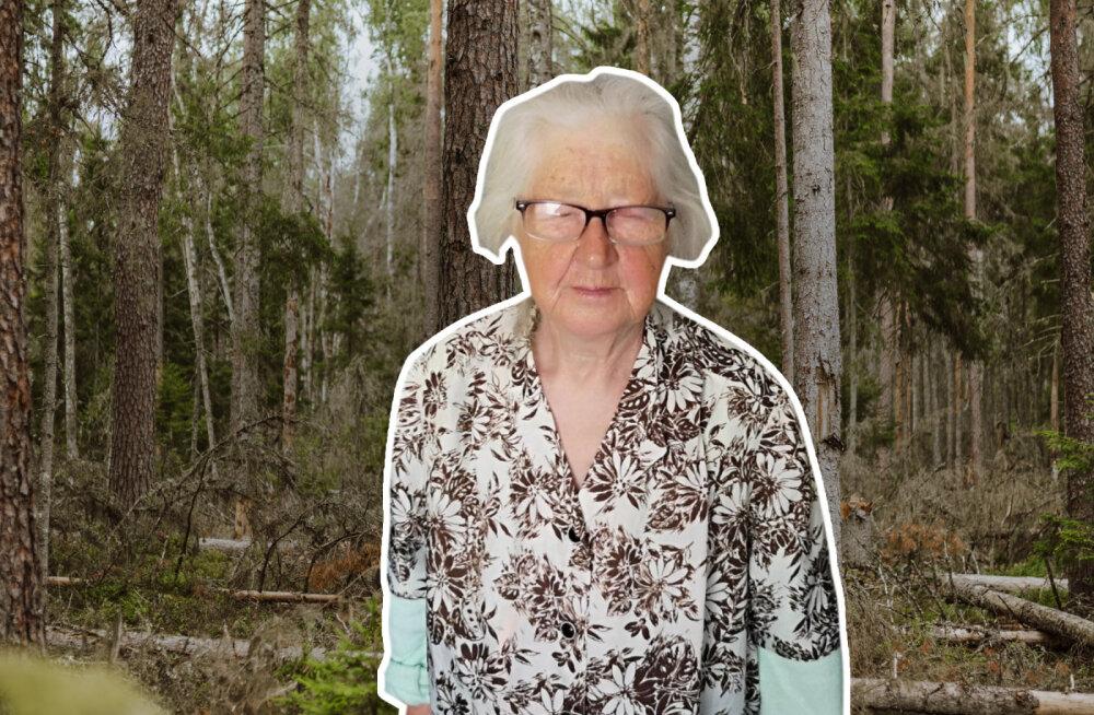 Ела только чернику и спала на ветках: как 86-летняя Евгения выживала 8 дней в лесу — эксклюзив RusDelfi