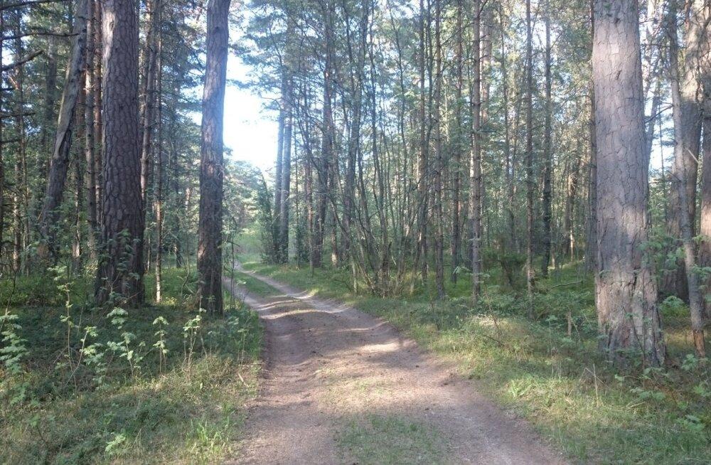 Kodanikuühendus esitas vaide Lohusalu parklaehituskavadele