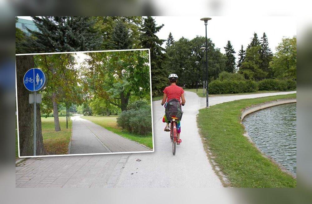 Шок: пара пенсионеров столкнула ехавшую на велосипеде женщину в пруд, где та чуть не утонула!