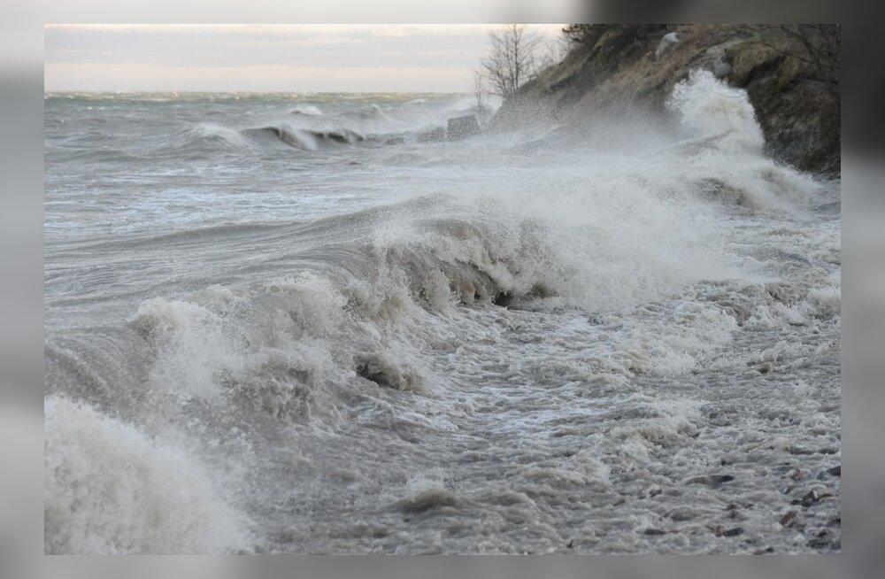 Kelnase ja Leppneeme sadamad tehakse 144 200 euroga korda