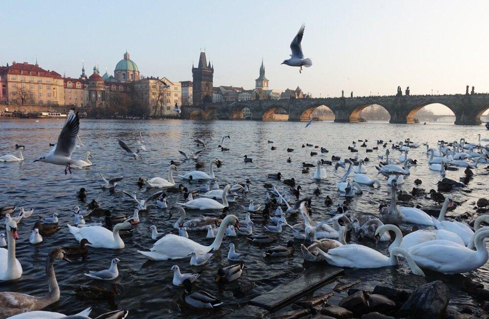 Külasta Prahat supersoodsalt: edasi-tagasi lennud Riiast alates vaid 30 eurost!