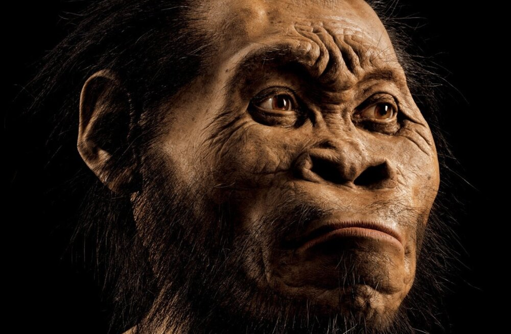 FOTOD: Lõuna-Aafrikas avastati uue inimeselaadse liigi luustikud