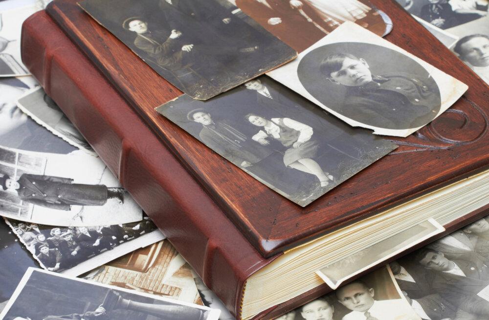 Suguvõsa seadused: pere vägi kui nähtamatu tugi
