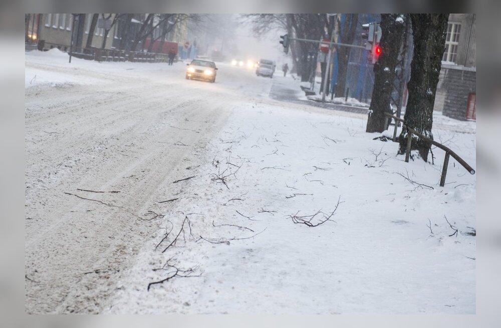 Teed on lumised, päeval levib üle Eesti uus sajuala