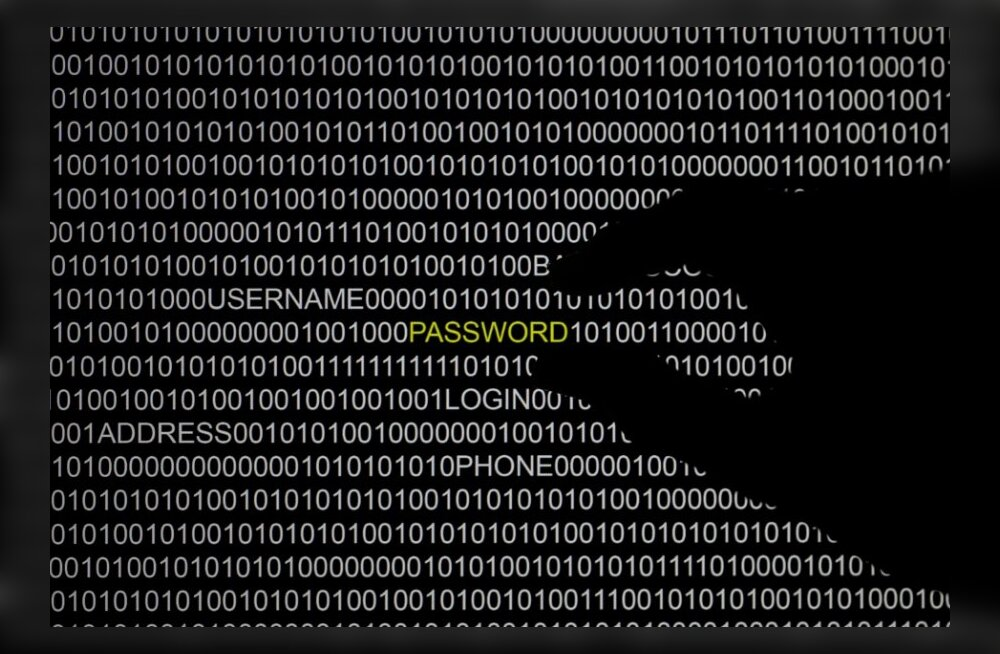 Ukraina parlamendi liikmeid on tabanud küberrünnakud