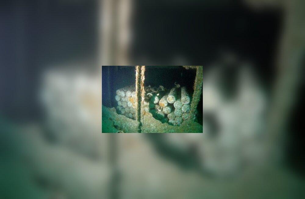 Läänemerre uputatud keemiarelvad põhjustavad kaladel mutatsioone