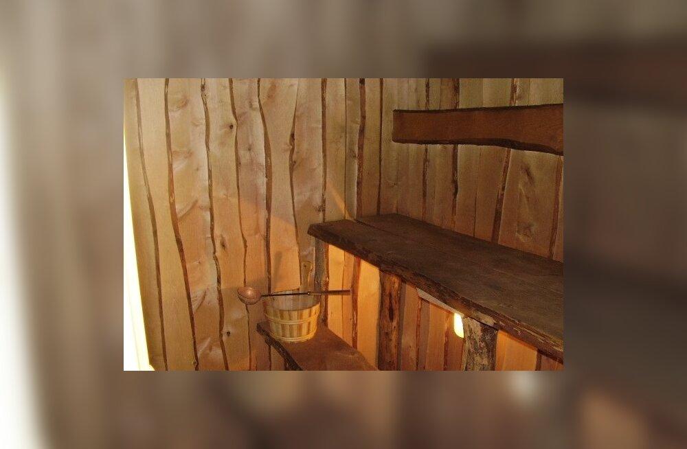 857ddec3562 Ekspert selgitab: milline üks õige saun tegelikult olema peab ...