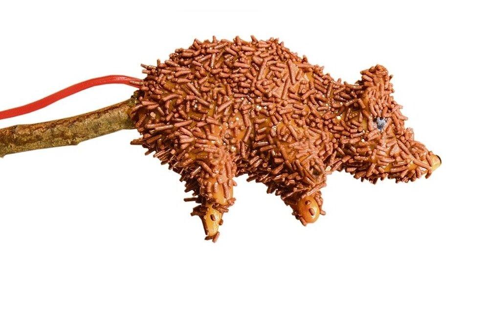 Siirupine rott pulga otsas kuulub mõistagi maailmaklassikasse ja loodetavasti leiab peagi tee ka meie talude laudadele.