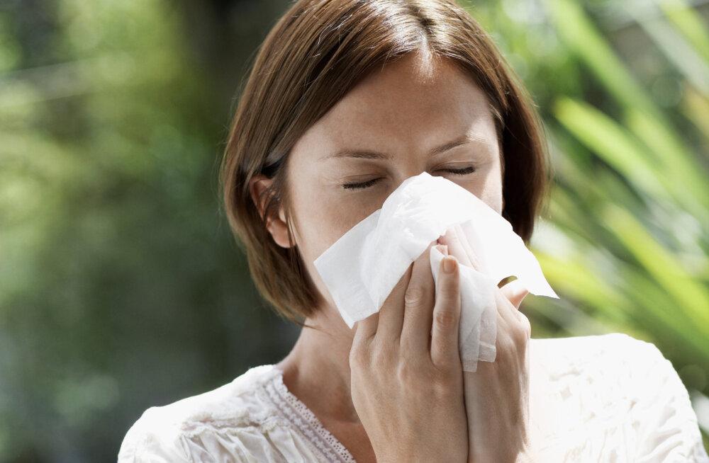 Kohe on käes allergiate hooaeg! Kuidas kevad üle elada?