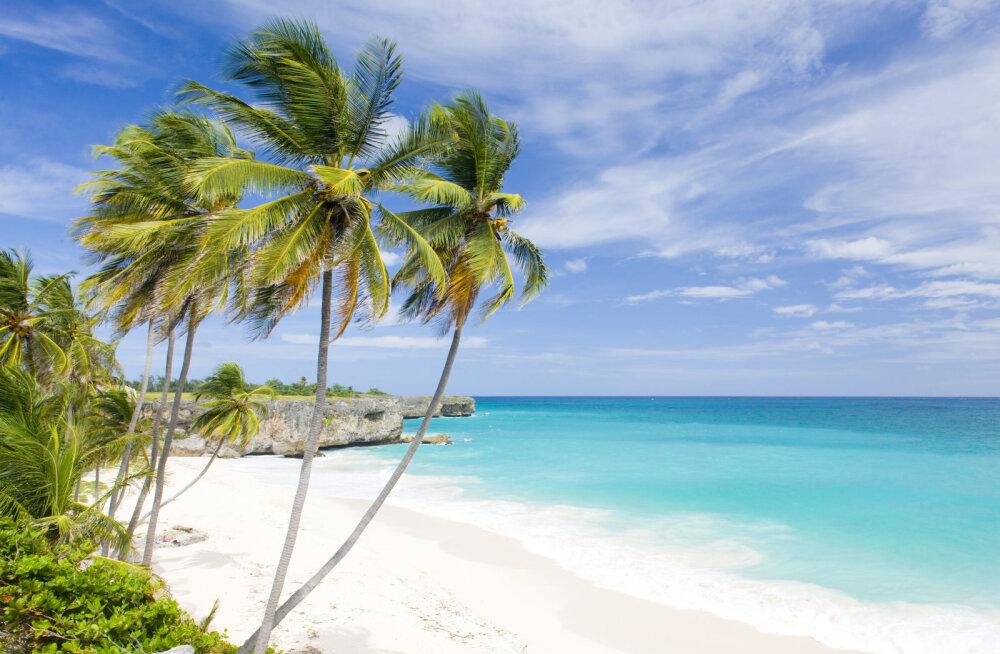 В Карибском море выставлен на продажу целый остров всего за 447 тысяч евро
