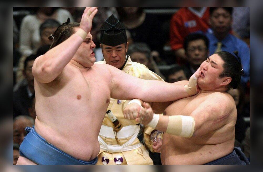 Aasta võidukamad sumomehed: Hakuho, Kotoshogiku ja Baruto
