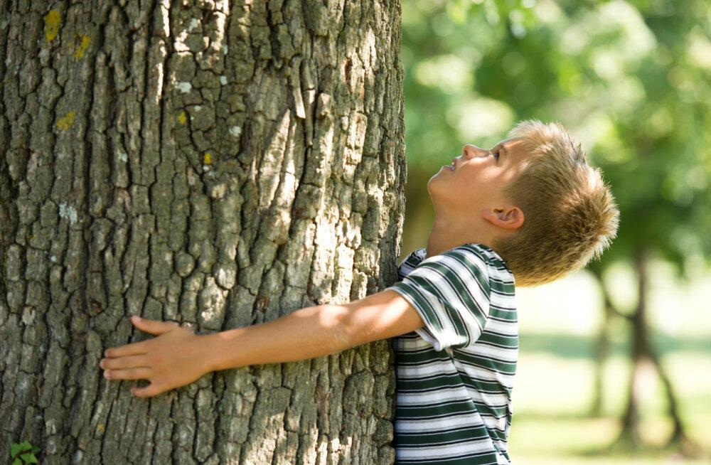 Puud on inimese sarnased