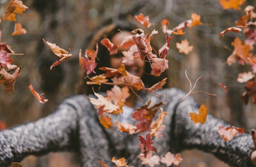 5 suurepärast plaani, mida septembrikuu jooksul ellu viia