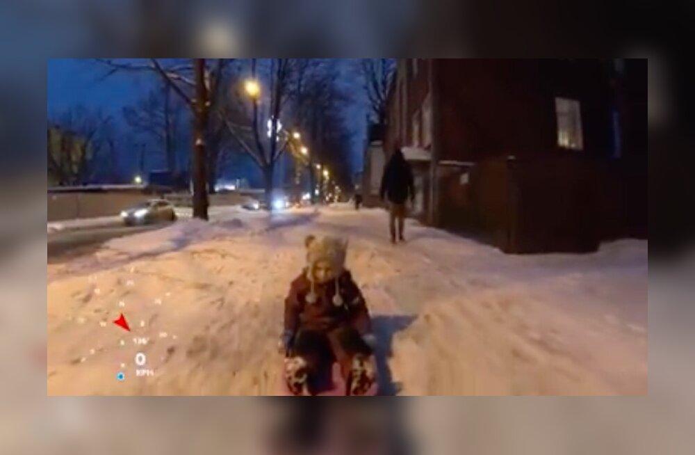 VIDEO | Isa vedas last kelguga ratta taga, pealtnägijad kaebasid politseile ära. Aga kas olukord oli ikka nii ohtlik?