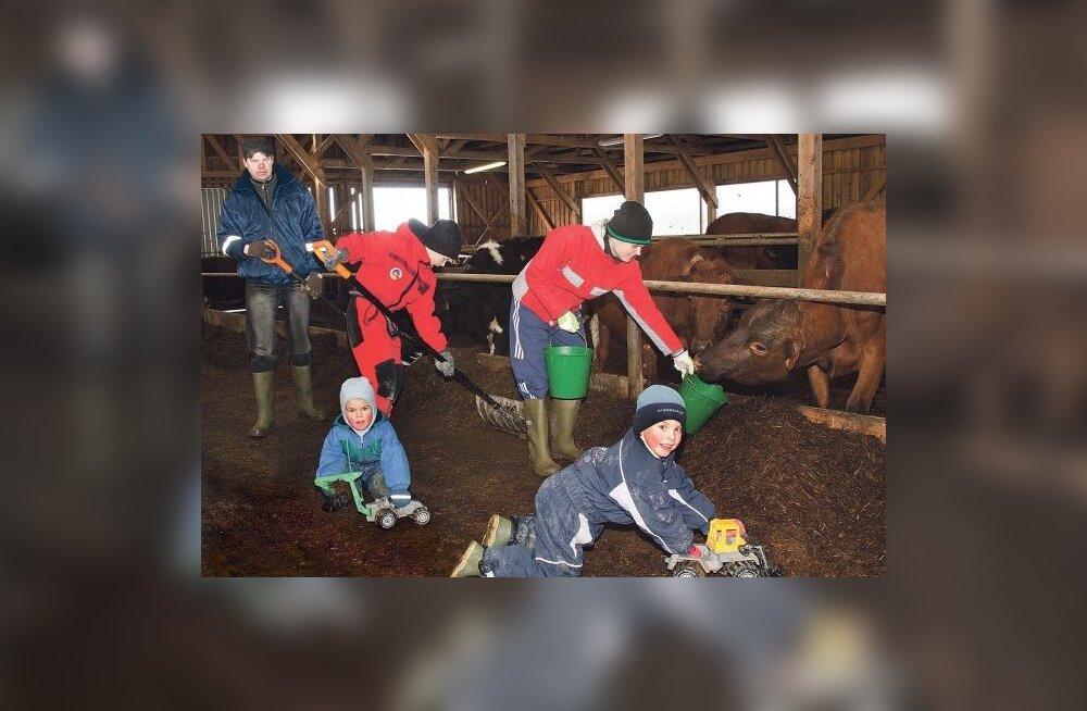 bcde22034af ... räägib Simmo-Paavli talu peremees Janek Mägi, kes koos perenaise Kaiga  – lapsed Madis, Margus ja Martin kaasas – toimetavad oma talus Saaremaal  usinalt ...