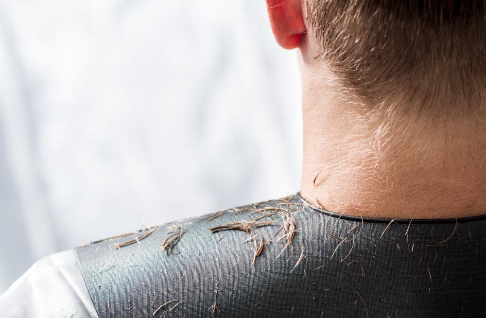 Mehed, broneerige juuksuriaeg! See aastakümnetetagune soengustiil on jälle moes