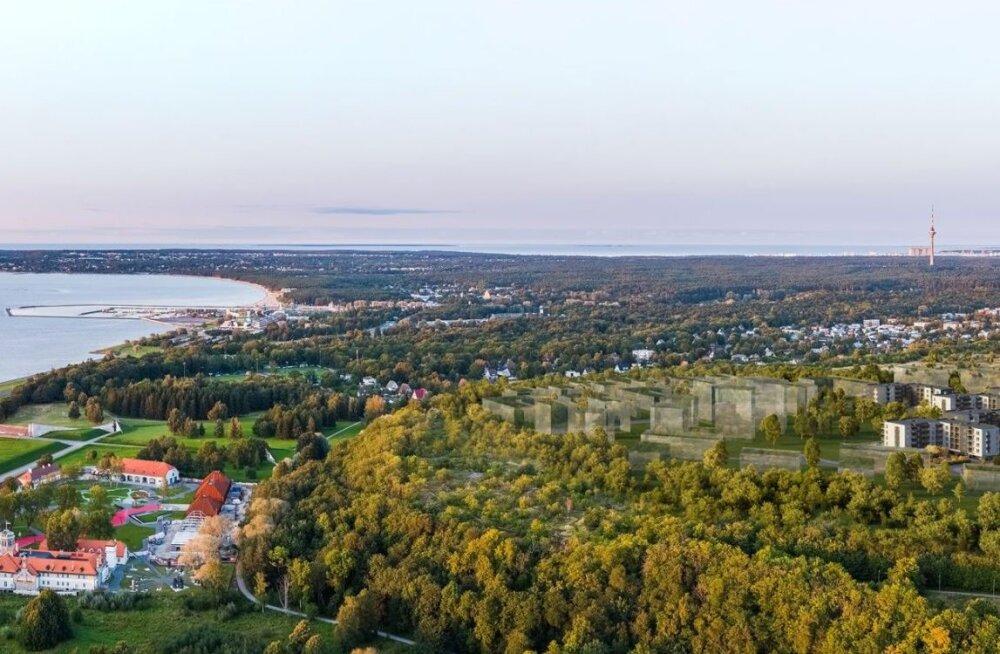 FOTOD | Kurioosum Eesti kinnisvaraturul: Tallinna suurarendust hoidis pikki aastaid kinni lilleke rohus