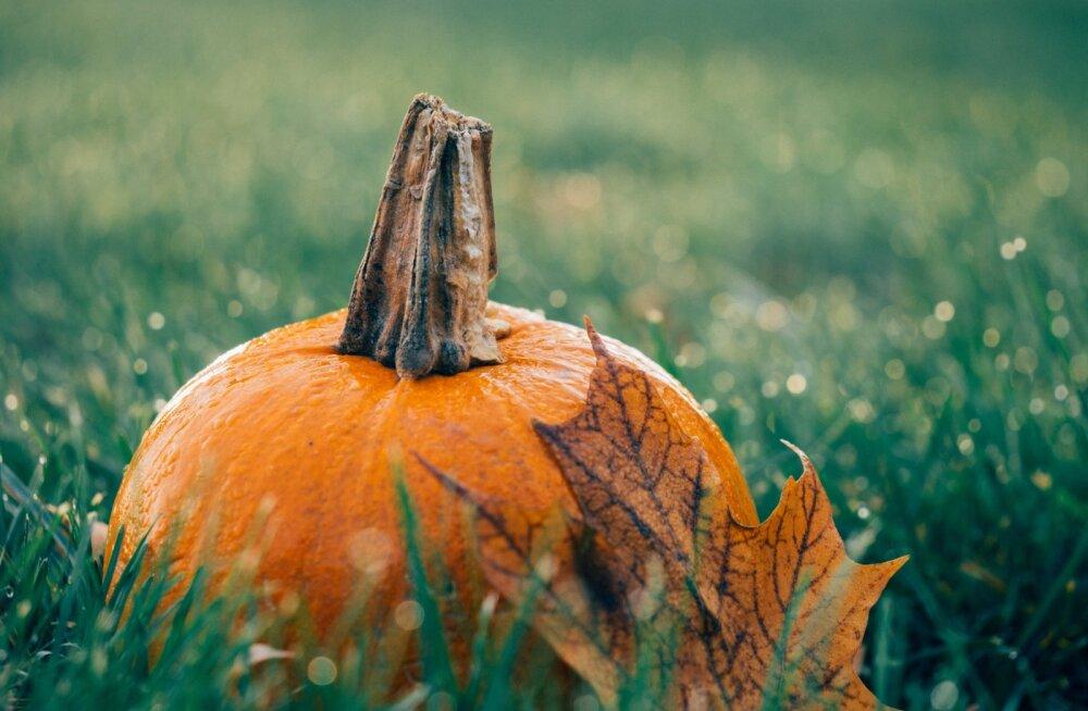 Самый полный гороскоп на октябрь. Узнайте, что готовят вам звезды!