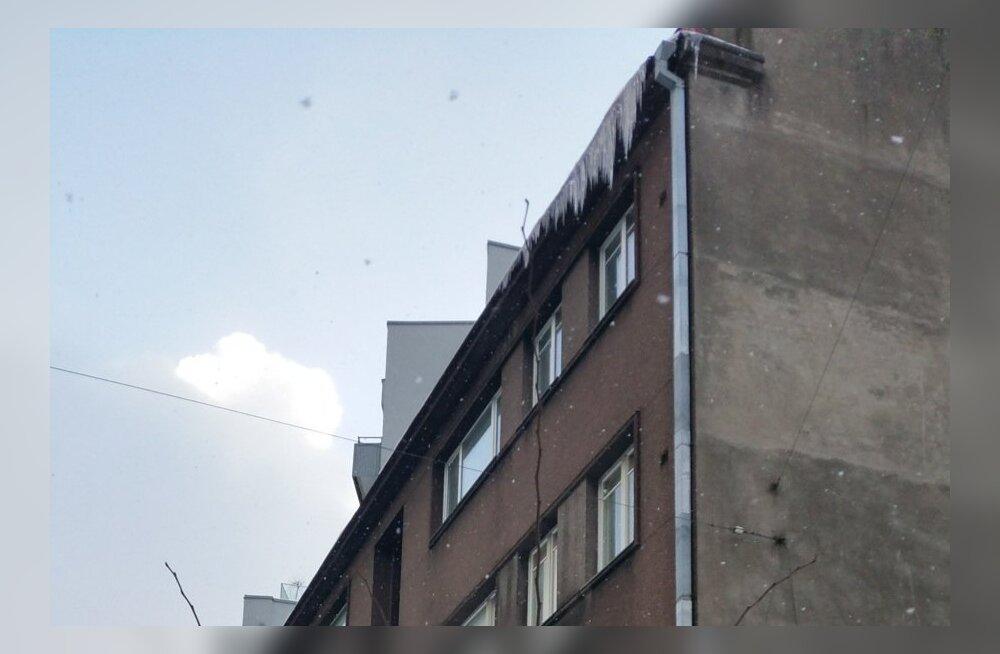 Jääpurikad Kentmanni tänaval asuva maja räästas
