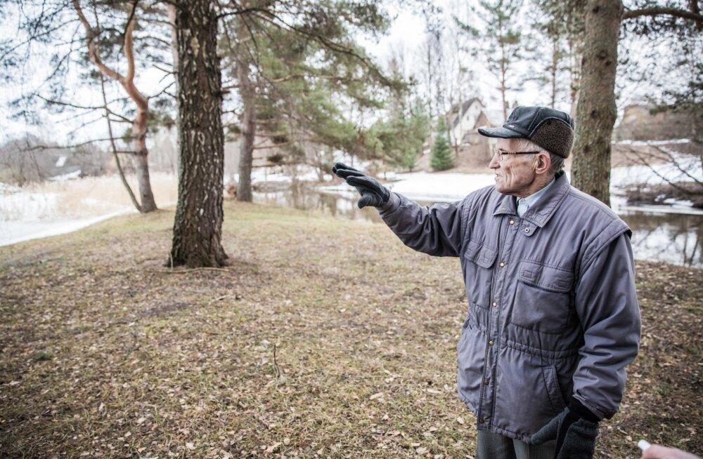 Räpina Laulupeo salu kaitsja Enu Mäela, Eesti Looduskaitse Seltsi Räpina osakonna juht, oma poole sajandi eest istutatud kaselt energiat ammutamas. Tema taga on näha osa kettagolfi rajast, mis nüüd kohalikus rahvas vastakaid arvamusi tekitab.