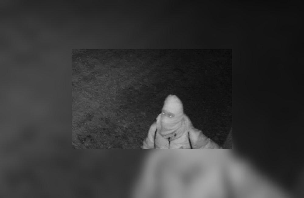 ФОТО: Криминальный Вильяндимаа: по Колга-Яани и Каркси-Нуйа прокатилась волна грабежей