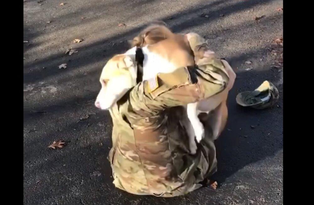 Uskumatu VIDEO | Vaata, kuidas reageerib koer, kui omanik peale aastapikkust eemalolekut koju naaseb