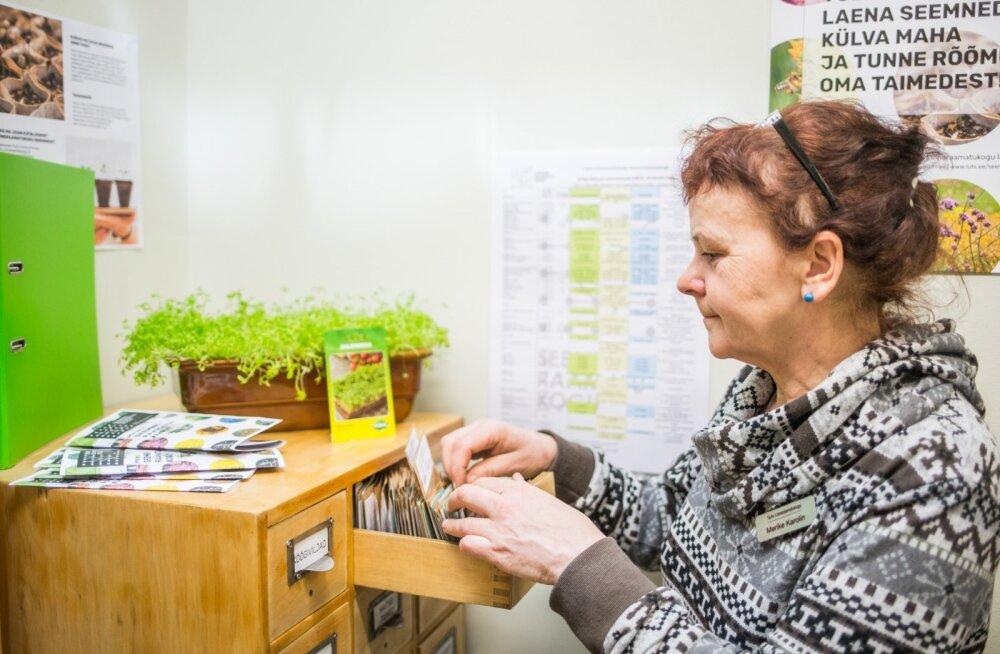 Seemneraamatukogu - Merike Karolin, raamatukogu teenindusjuht